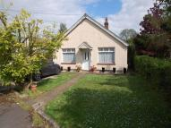 Detached Bungalow for sale in Seldon Road, Tiptree...