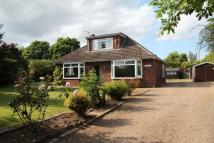 3 bedroom Detached home for sale in Garden Road, Blofield...