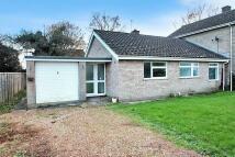 3 bedroom Semi-Detached Bungalow for sale in Beverley Road, Brundall