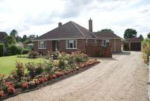 Detached Bungalow in Blofield, Norwich