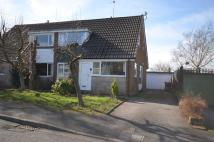 3 bed semi detached home in Boxwood Drive...