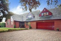 4 bedroom Detached house for sale in The Spinney...