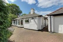 2 bed Detached Bungalow for sale in Harrow Road...