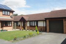 Detached Bungalow in Perran Grove, Cusworth...