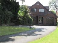 Detached Bungalow for sale in Melton Road, Sprotbrough...