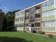 Kenilworth Apartment to rent