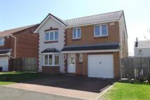 4 bedroom property in Bowman Warren Wynd -...