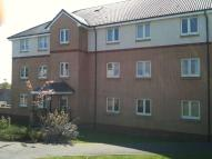 2 bed Retirement Property to rent in Whitehaugh Road, Darnley...