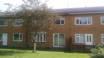 Terraced home to rent in Brecon Close, Peterlee...