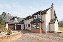 Detached property for sale in Neah Mair 8 Halmyre Loan...