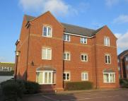 12 bedroom Apartment for sale in Coney Lane...