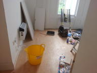 Studio apartment in Amhurst Park, London, N16