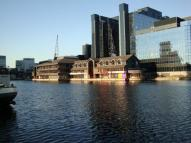 property to rent in Harbour Island,