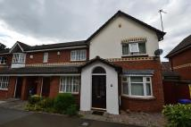semi detached property to rent in Whitsand Road, Sharston