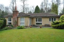 Bungalow in Shrubbery Grove, Royston