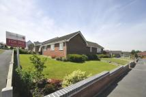 2 Redbrook Avenue Detached Bungalow for sale
