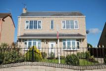 3 bed Detached house in 101 Shuttlewood Road...