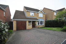 Detached house for sale in 3 Waltham Croft, Hasland