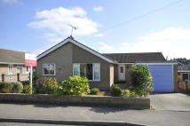 Detached Bungalow in 18 Clarendon Road...