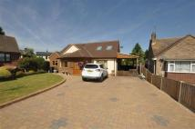 5 bedroom Detached property in Brain Valley Avenue...