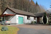 Detached Bungalow for sale in Invermoriston, IV63 7YA