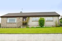 Detached Bungalow for sale in 39 Moss Road, Tain...