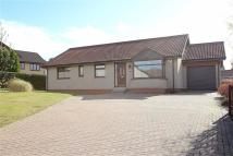 Detached Bungalow in Burnbrae Place, Westhill...