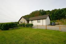 4 bed Detached Bungalow in Ballamneach Craigton...