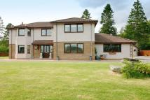 6 bedroom Detached Villa in Parklands, Tullich...