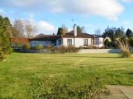 5 bedroom Detached property in Berkeley Myrtlefield...