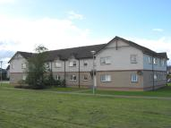 2 bed Flat to rent in Castle Heather Drive...