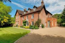 6 bedroom Detached property for sale in Upper Street...