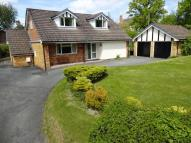 Bungalow for sale in Cefnllys Lane...