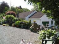 Detached Bungalow in Gardd Yr Afon, Forge...