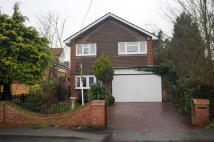 Detached property for sale in Blackmore Road...