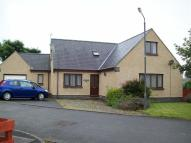 Pant Llwyd 5 Parc Gwyrdd Detached Bungalow for sale