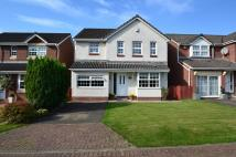 4 bed Villa in Somerville Park, Lawthorn