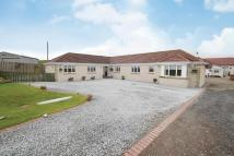 Detached Bungalow for sale in Greenhead Holdings...