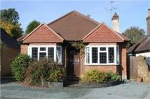 3 bed Detached Bungalow for sale in The Green, Tadworth...