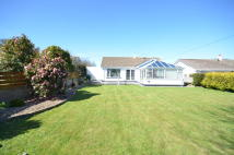 Detached Bungalow for sale in Penventon, Redruth, TR15