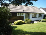 Detached Bungalow in Albany Road, Redruth...