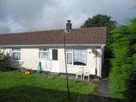 semi detached home to rent in EAST PARK, Redruth, TR15