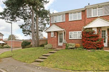 3 bed semi detached home in Belgrave Manor, Woking ...