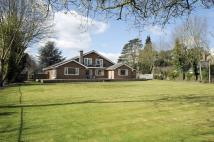 6 bedroom Detached house in BUILDING PLOT ON THE...
