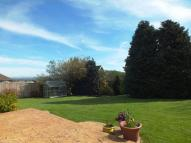 Detached Bungalow in Seaton