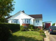 Semi-Detached Bungalow for sale in Colyton