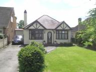 Detached Bungalow in Lichfield Rd...