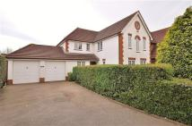 ASHFORD Detached house for sale