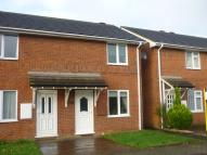 Terraced house to rent in Exwick