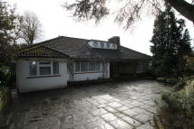 Detached Bungalow for sale in Fallowfield, Stanmore...